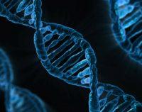 Nić DNA