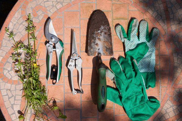 Narzędzia do przycinania drzew